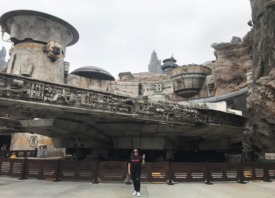 Star Wars: Galaxy's Edge - Millenium Falcon & Smuggler's Run